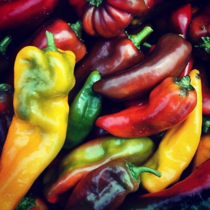 sweet Italian frying peppers