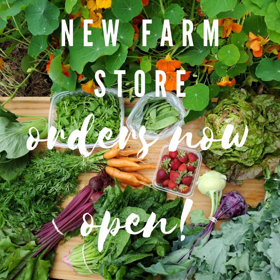 new farm store